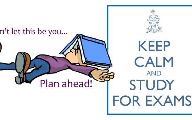 Holiday Cheer and Exam Fear: A Students Guide to a Successful Exam